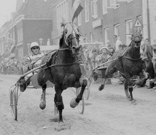 http://www.geschiedenisschellinkhout.nl/1981_1985/1982/1982_pikeur.jpg